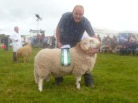 Reserve Interbreed Champion