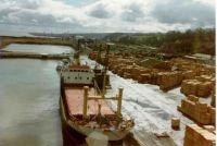 In the 1980's - 1990's Mostyn was the main UK centre for Portuguese maritime pine used in pallet making and fencing panels