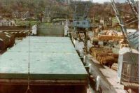 1984   ''Coals of Newcastle!'' Welsh grown round wood being loaded for Finland