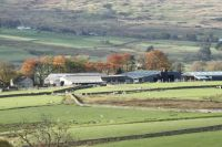 Cernioge Bach Farm Betws y Coed