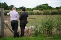 Wedding guests with next years hog roast