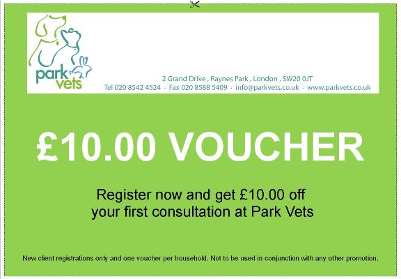 Special offer for new clients at Park Vets in Raynes Park