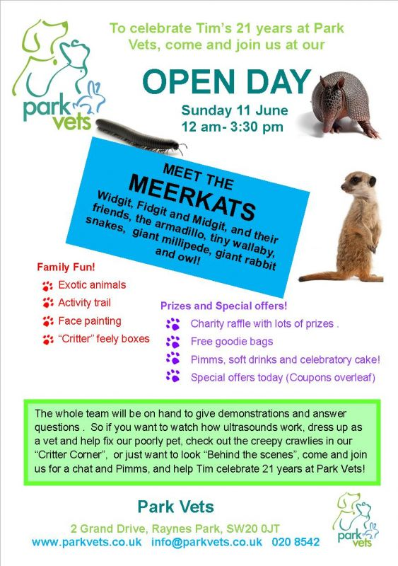 Meerkats, and armadillo and wallaby at Park Vets' open day!