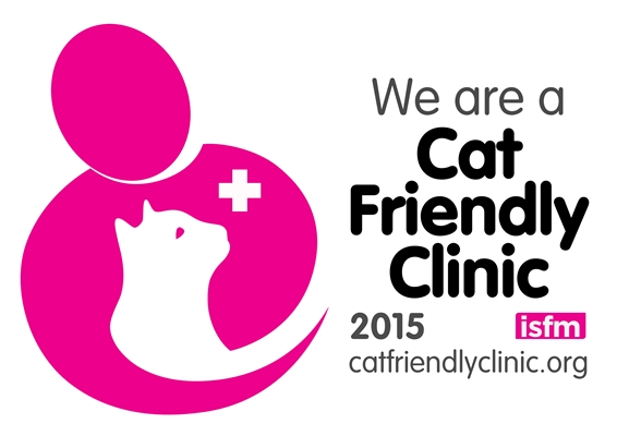 Cat Friendly Vet Practice in SW London